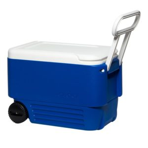 Igloo 38 QT Cooler